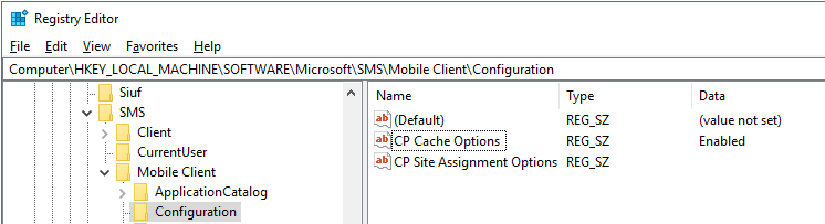 How to change the CCMcache size, when option is disabled