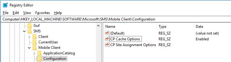 CCMCache_Reg